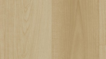 Acczent Excellence 80 25128141 (Modern Maple).jpg