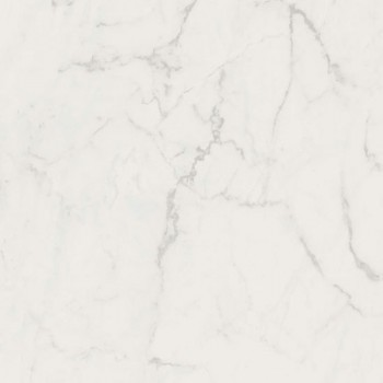 Protectwall 26500064 (Marble Carrare).jpg